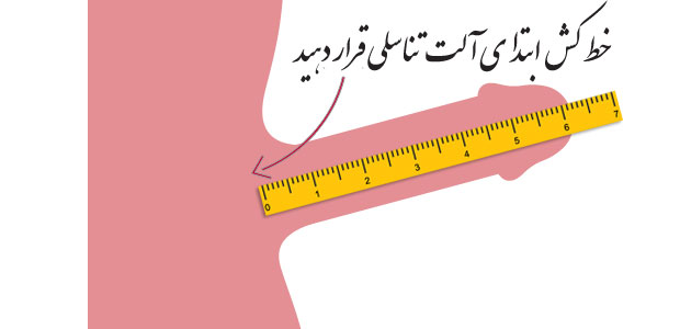 اندازه گیری طول آلت تناسلی در رابطه جنسی
