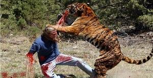 حمله حیوانات به انسان ,حمله حیوانات