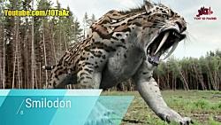 10 حیوان بینظیر که منقرض شدند