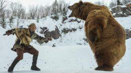 دفاع در برابر خرس