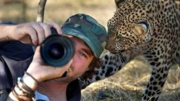 Exciting pictures of wildlife