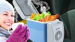 refrigerator-and-car-heater (8)