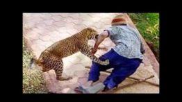 حمله حیوانات به انسان +18