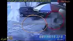حمله وحشتناک گراز وحشی غول پیکر به انسان ها و حیوانات