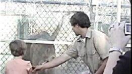 فیلم حمله حیوان به انسان