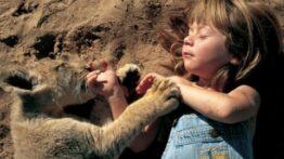 حمله حیوانات وحشی به خانه ها