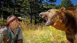 خطر انسان در برابر حیوانات وحشی