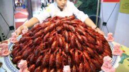 زنده زنده خوردن سوسک و عقرب و مخصوصا هشت پا در چین