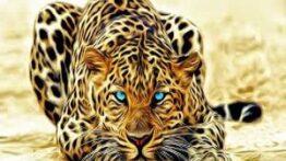 شکار حیرت انگیز حیوانات وحشی
