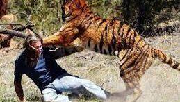 10 حمله حیوانات وحشی در طبیعت